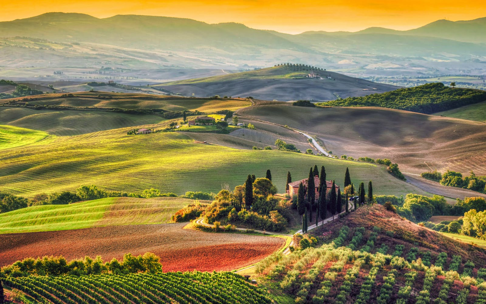 tuscany day tour with tuscan lunch and wine tasting-3