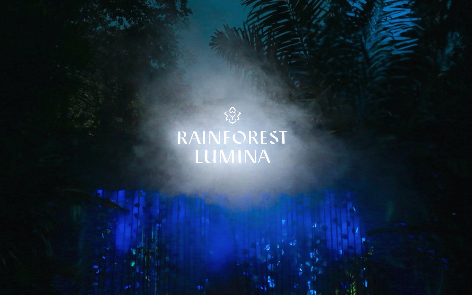 rainforest lumina-1