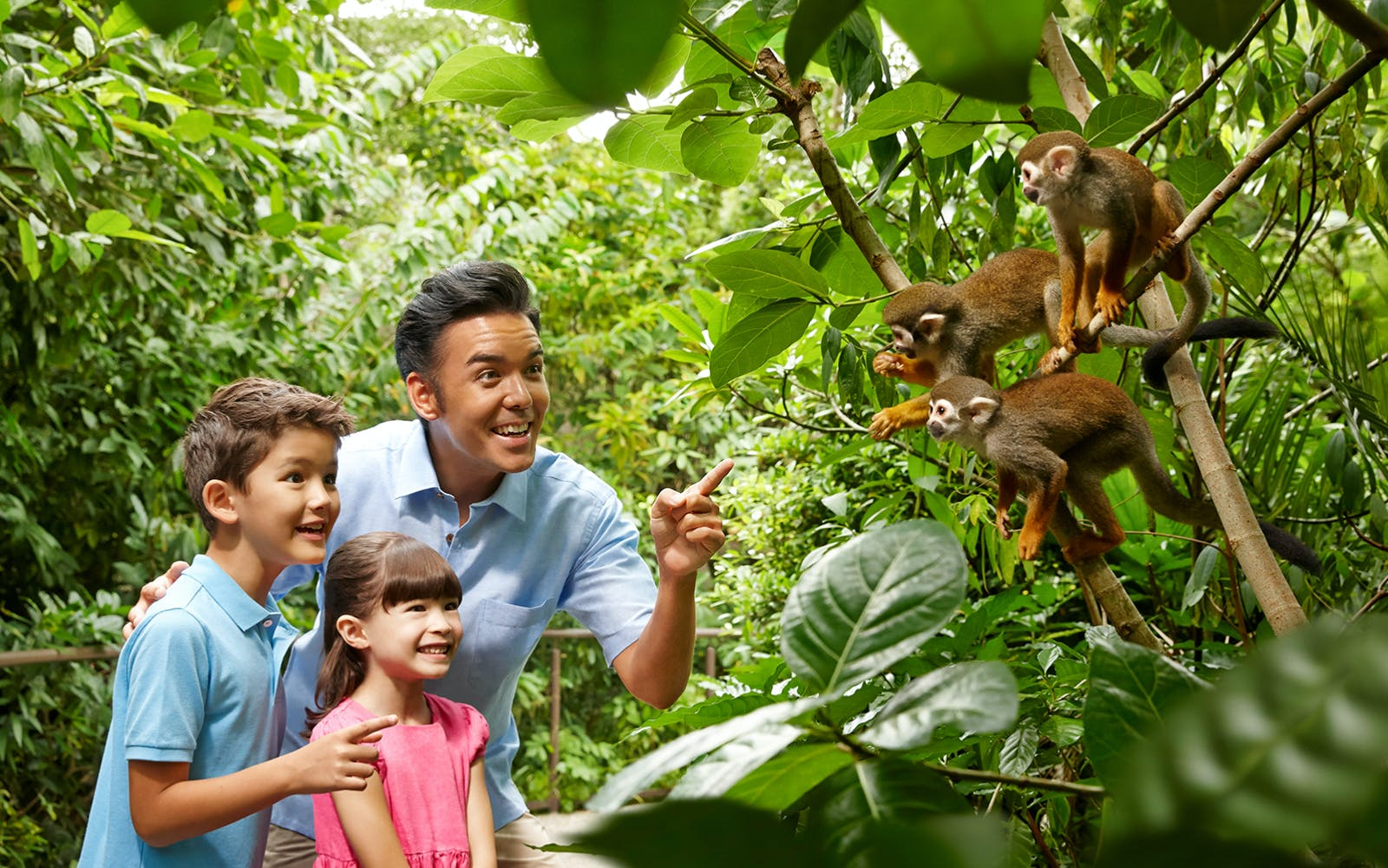 super saver combo: rainforest lumina + singapore zoo-2