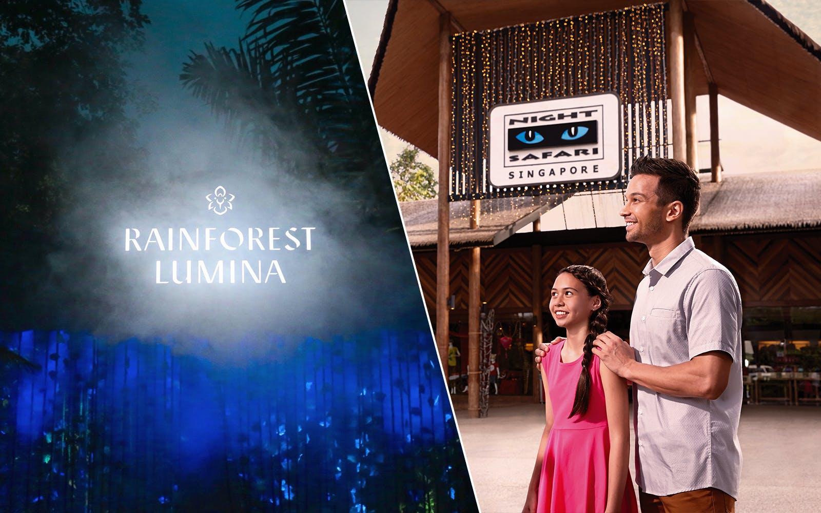 rainforest lumina + Night Safari