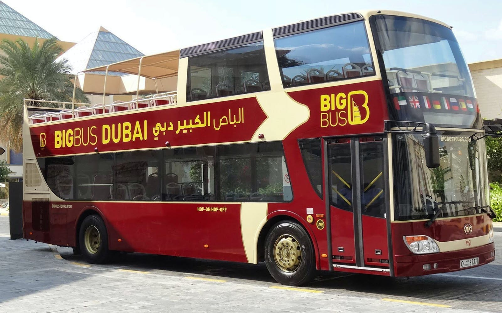 Big Bus 5 Day Hop-On Hop-Off Tour + Dhow Cruise + Lost Chambers Aquarium