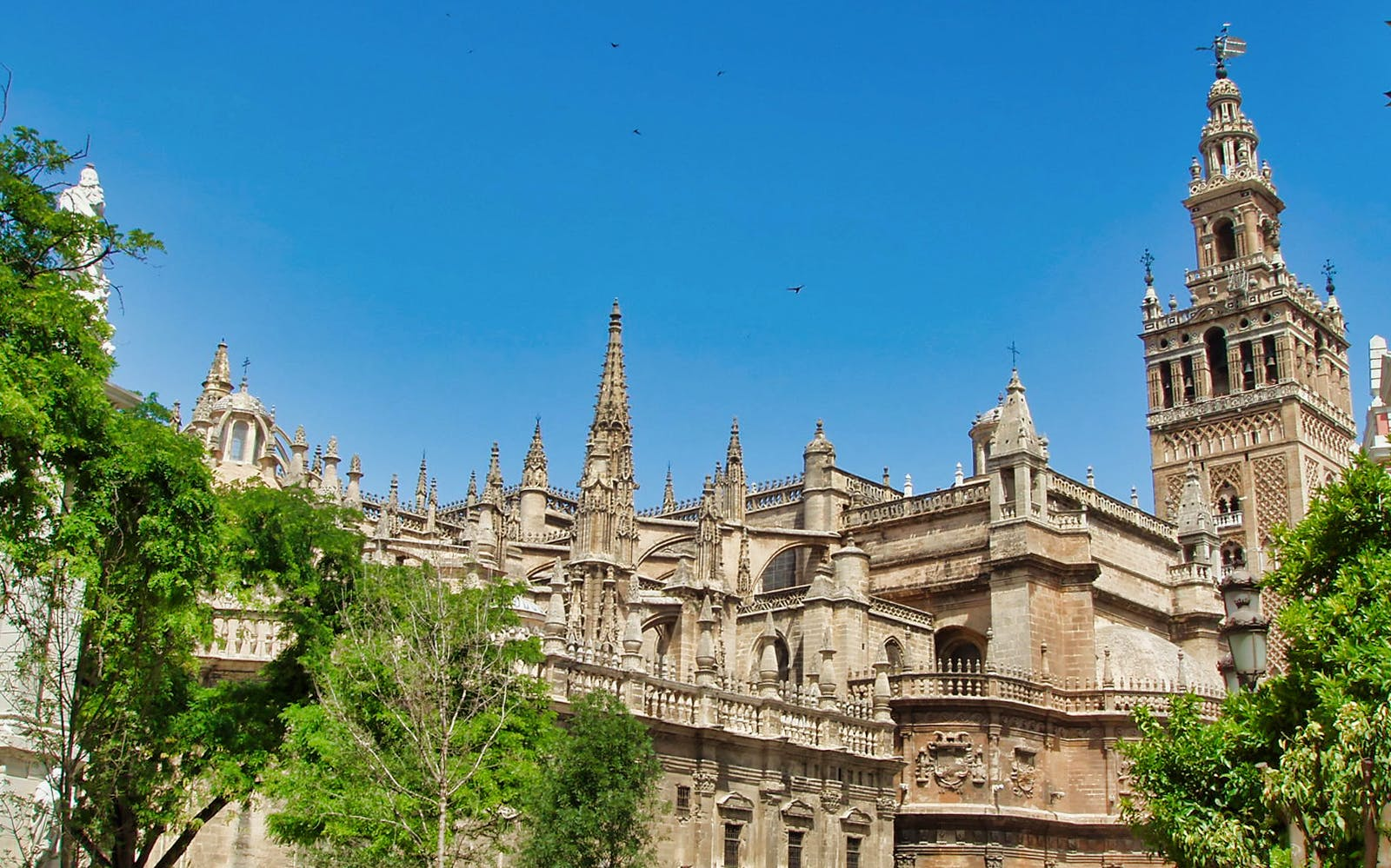 skip the line guided tour to cathedral & giralda towers-4