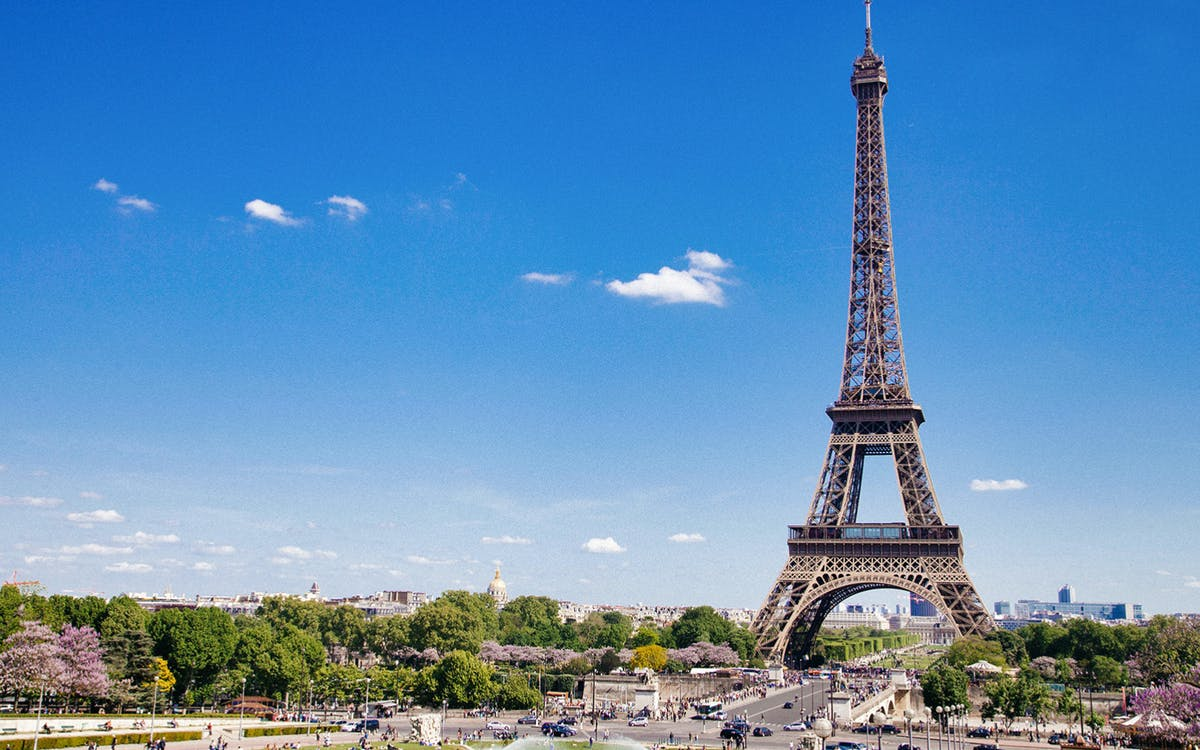 lunch at the eiffel tower with 2nd floor ticket & paris city tour-4