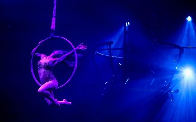Royal Festival Hall - Circus 1903