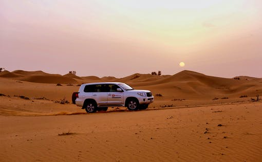 Evening Desert Safari with BBQ Dinner, Camel Ride & Sandboarding