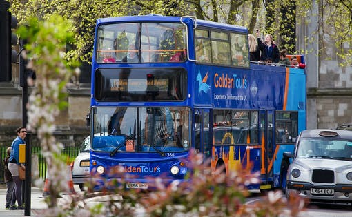 1 Day Hop-On Hop-Off Sightseeing Bus Tour