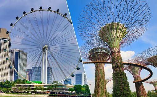 Singapore Flyer + Gardens by the Bay
