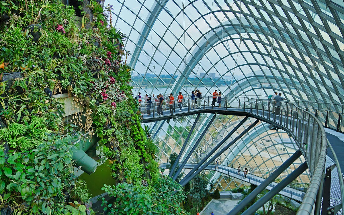 singapore flyer + gardens by the bay-2