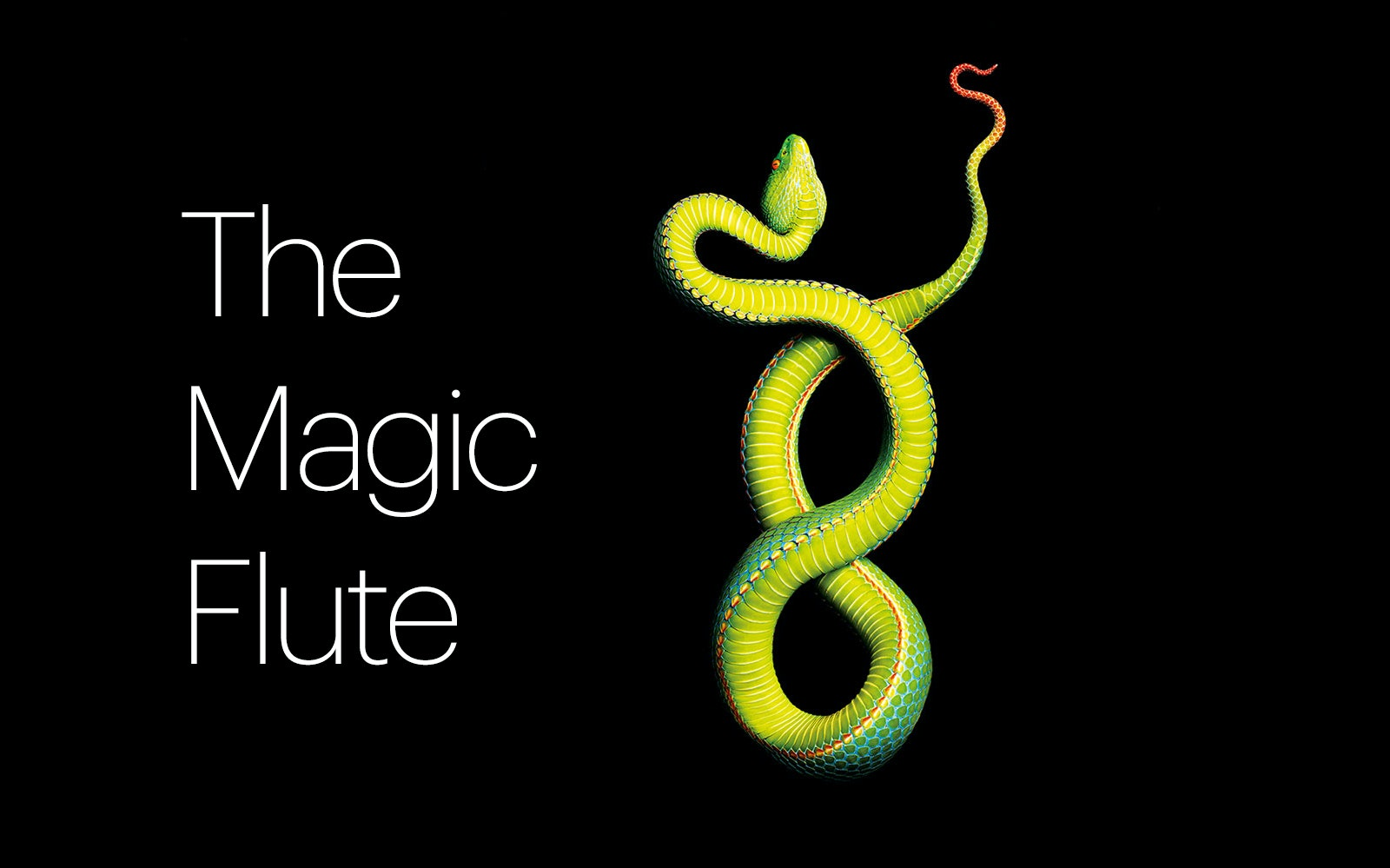 Best west end Shows The Magic Flute