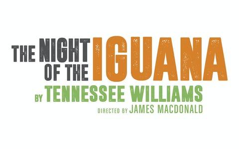 Noël Coward Theatre london - The Night of the Iguana