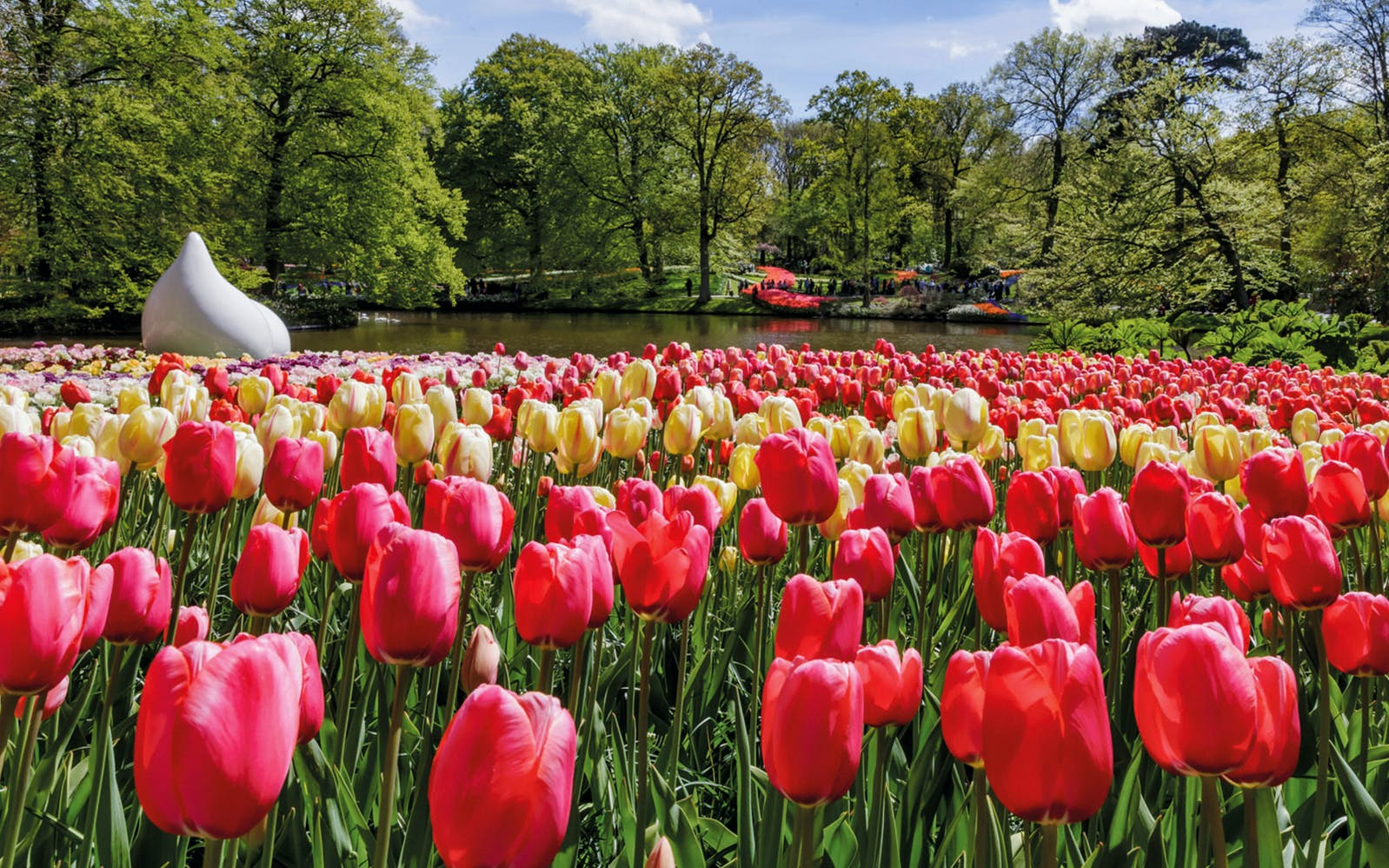 Keukenhof Fast Track Entry Ticket & Transfers From Amsterdam