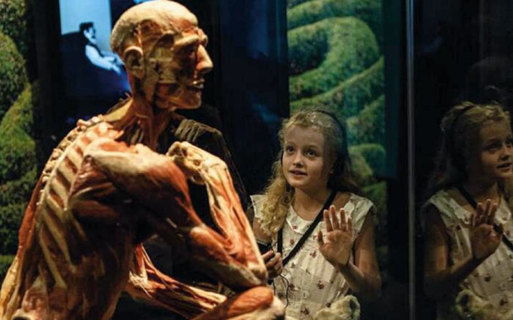 Body Worlds London Tickets Only Tickets Co Uk