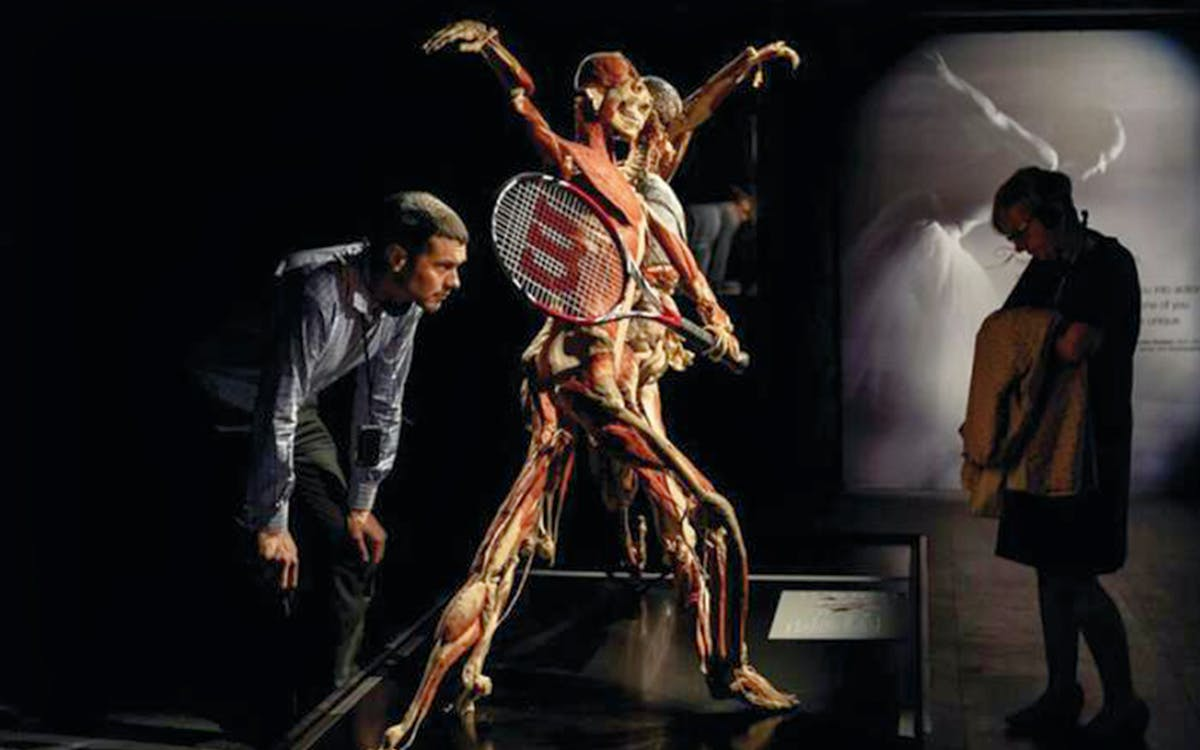 body worlds london-3