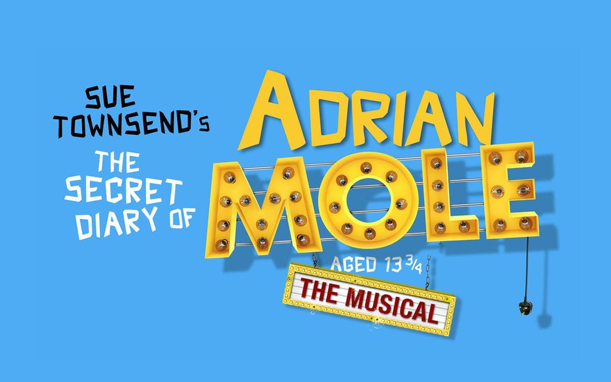 the secret diary of adrian mole aged 13 3/4-1