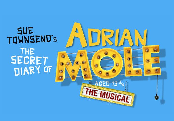 Best West End Shows The Secret Diary of Adrian Mole aged 13 ¾