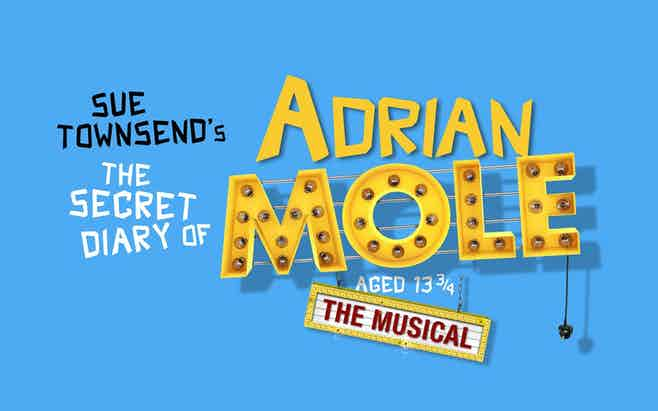 The Secret Diary of Adrian Mole West End Discount Tickets