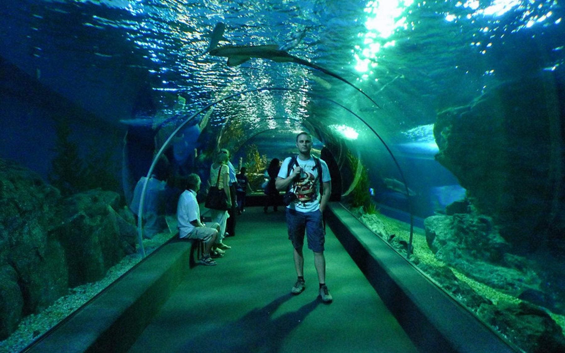 Sea Life Bangkok Ocean World Tickets