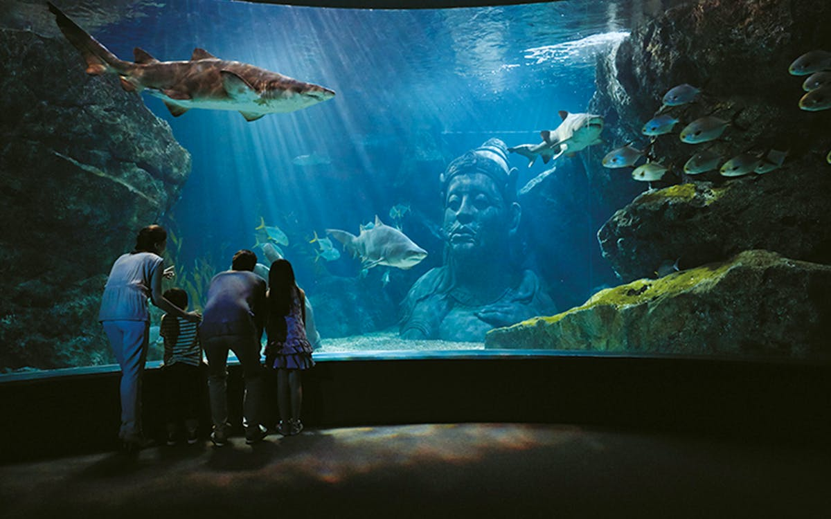 skip the line tickets:sea life bangkok ocean world-1