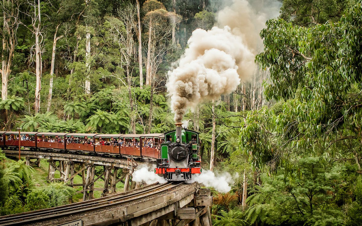 puffing billy steam train ticket-4