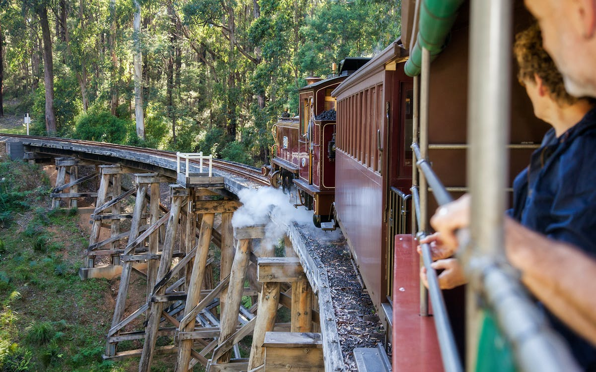 puffing billy steam train ticket-2