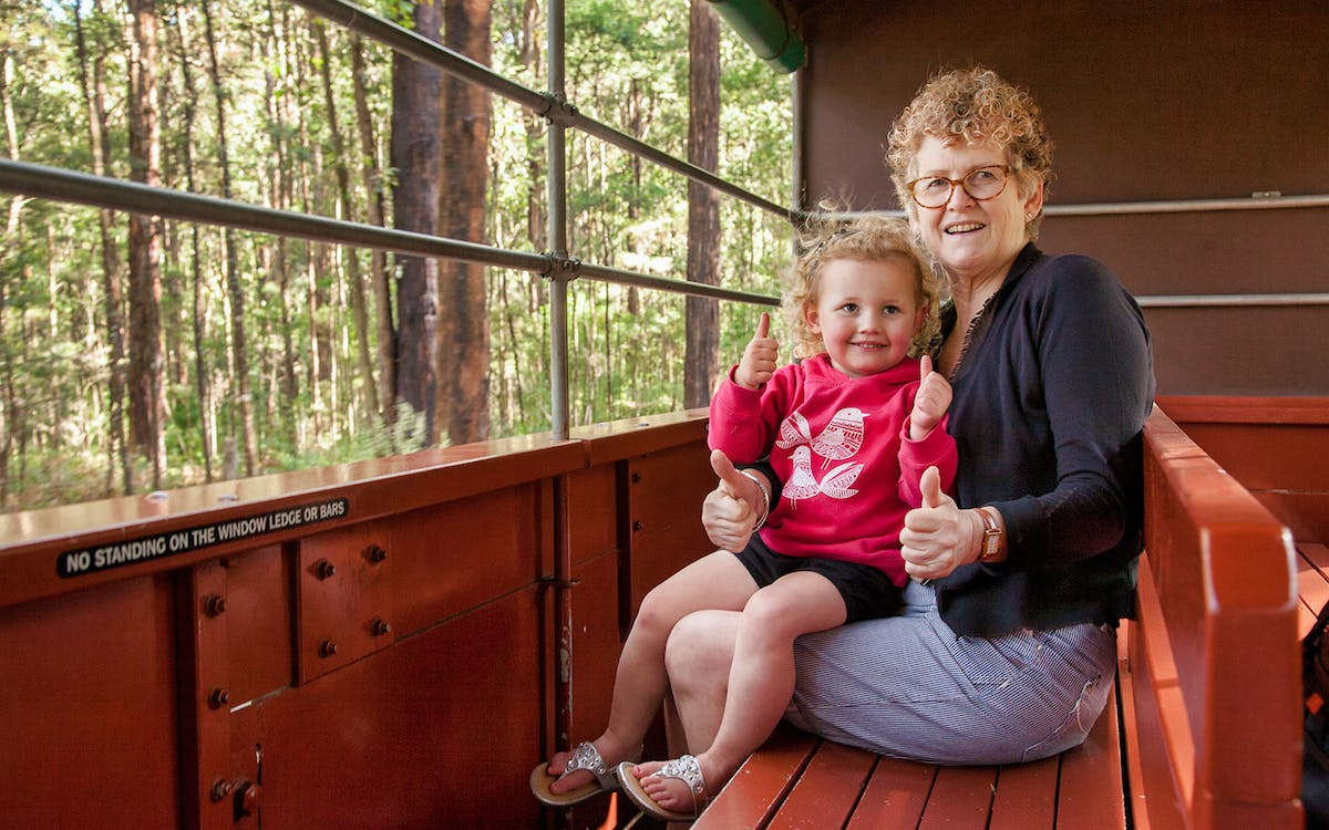 puffing billy steam train ticket-5