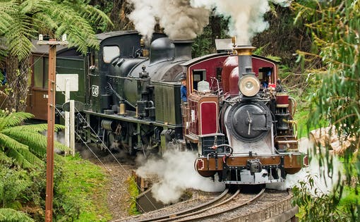 Puffing Billy Steam Train Ticket