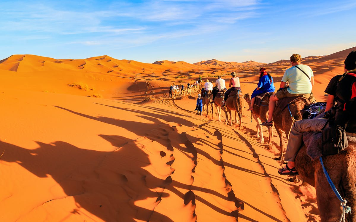 premium sunrise camel trek with breakfast-1