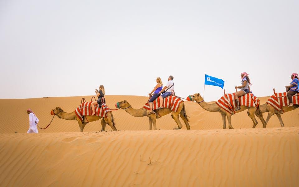 premium morning desert safari: sandboarding & camel safari-1