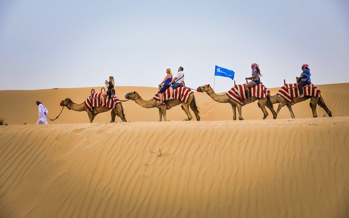 premium morning desert safari: sandboarding & camel safari-1