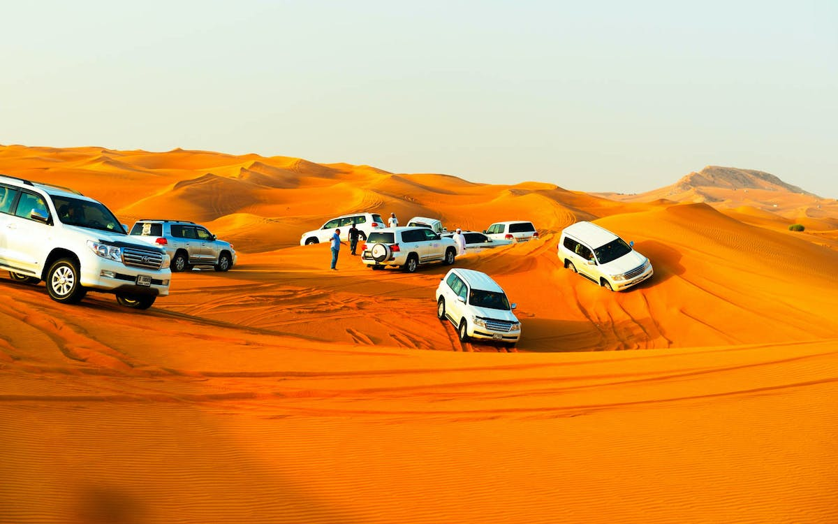 arabian dune desert safari with sandboarding, camel ride & bbq dinner-1