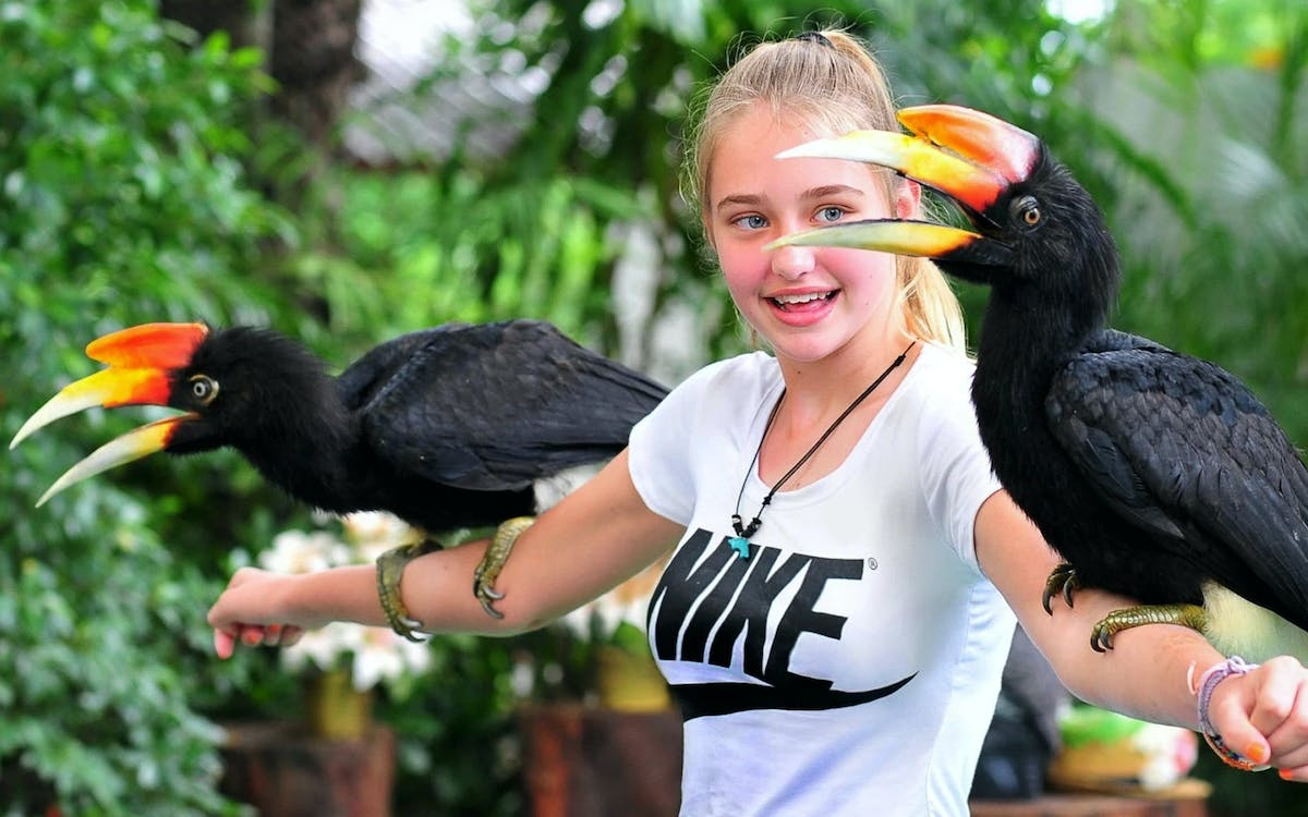 phuket bird park ticket-1