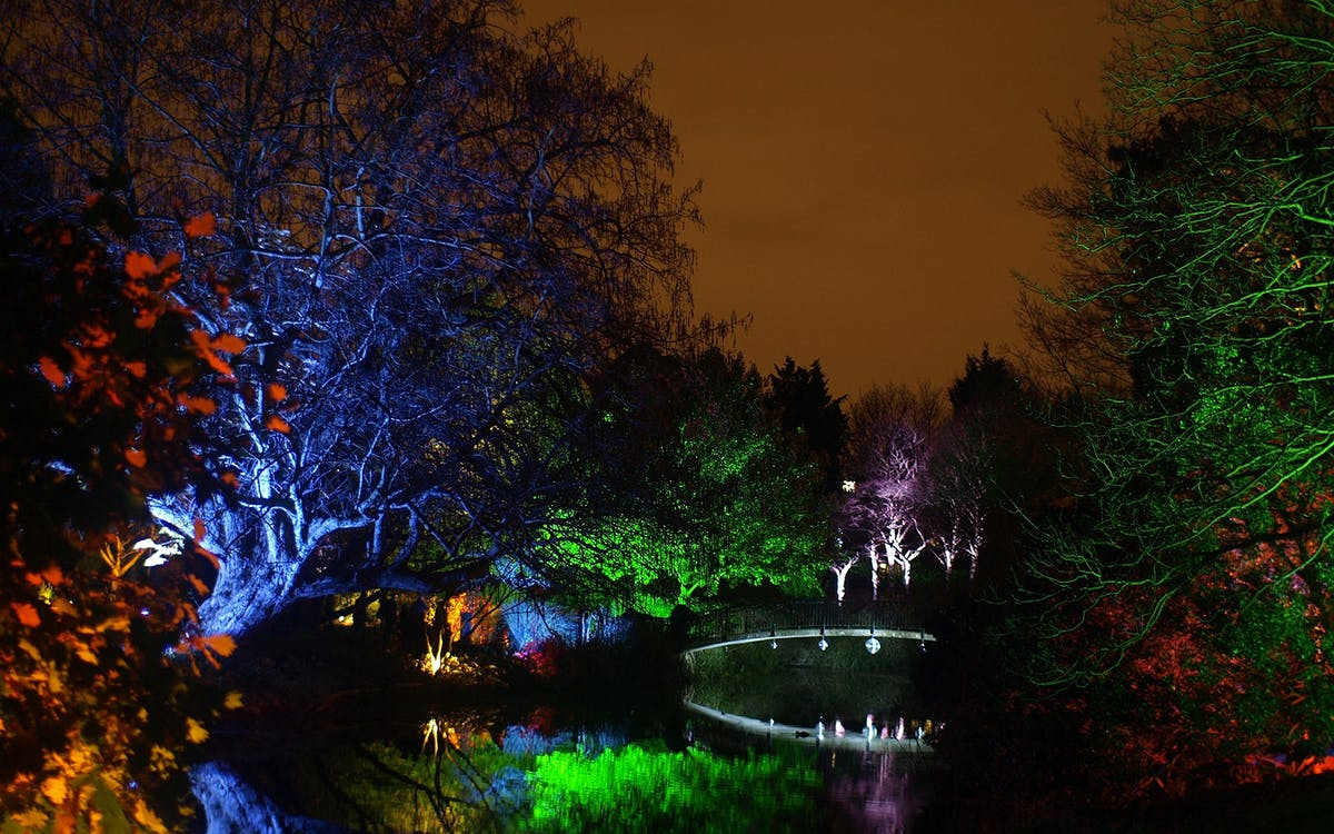 syon park's enchanted woodland entrance tickets-1