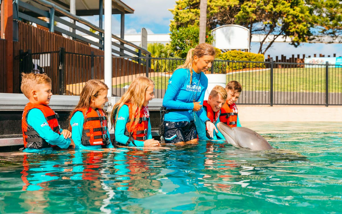 gold coast sea world single day pass -1