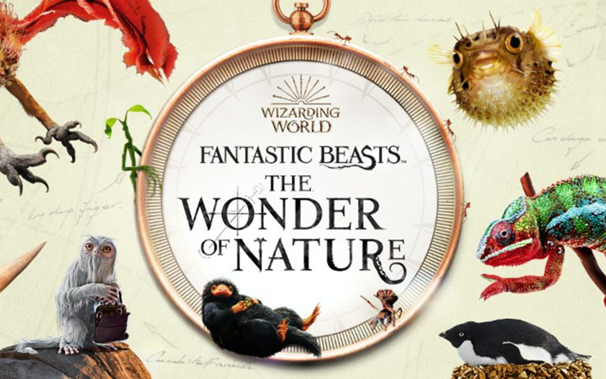 fantastic beasts™: the wonder of nature-1