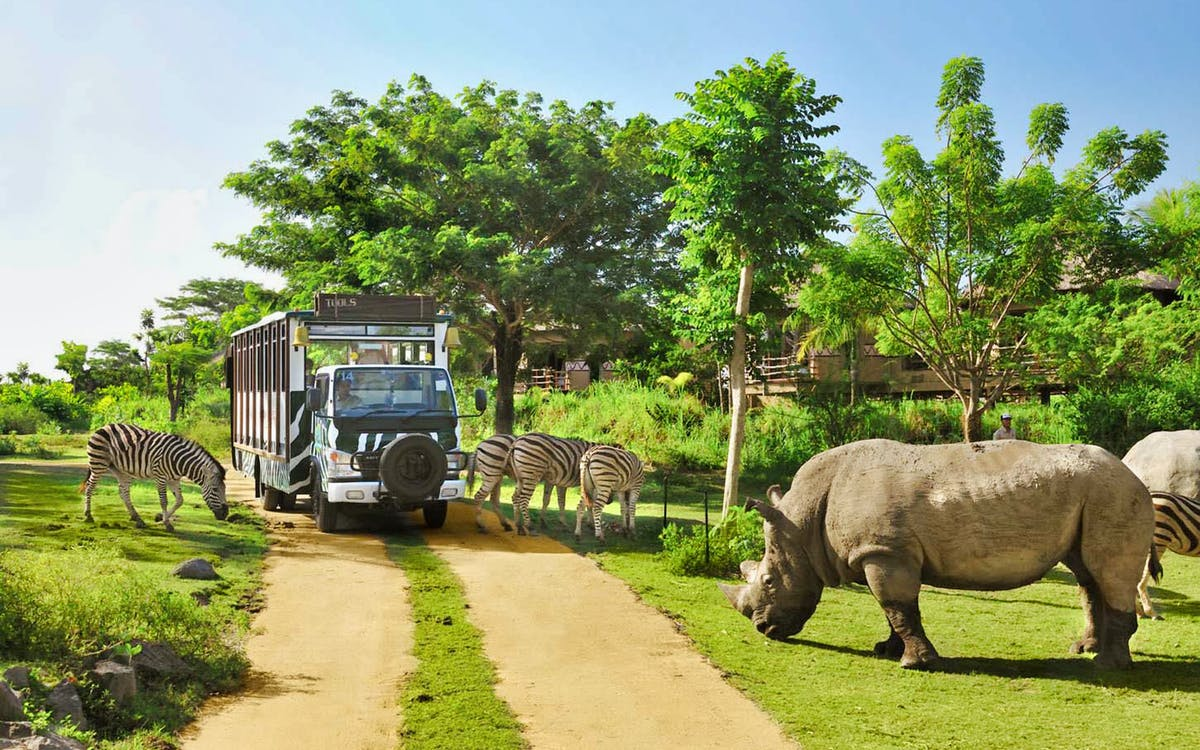 bali safari and marine park admission tickets-1