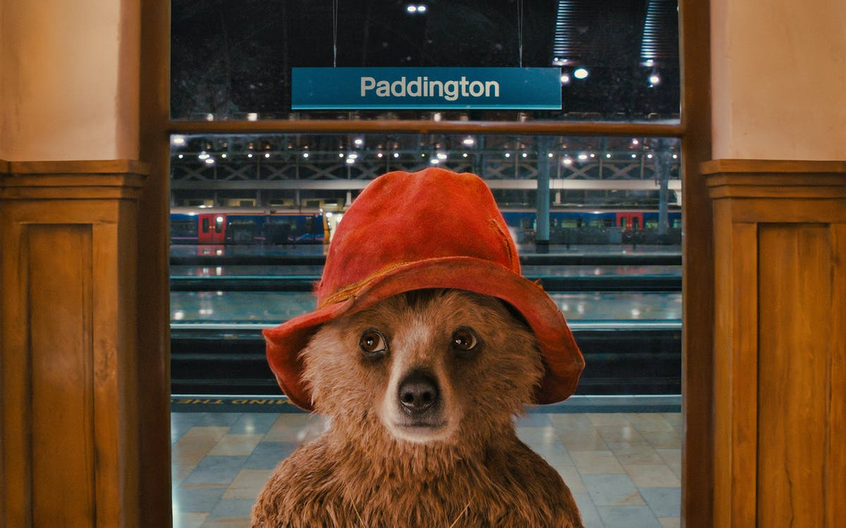 paddington bear walking tour-1