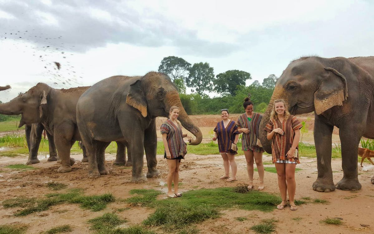 elephant jungle sanctuary pattaya experience-1