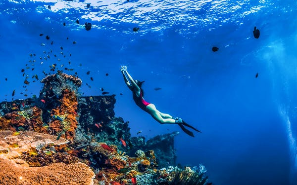 Wiasata Bali Amed Bali Snorkeling: Japanese Shipwreck & Vienna Beach – Full Day   Headout
