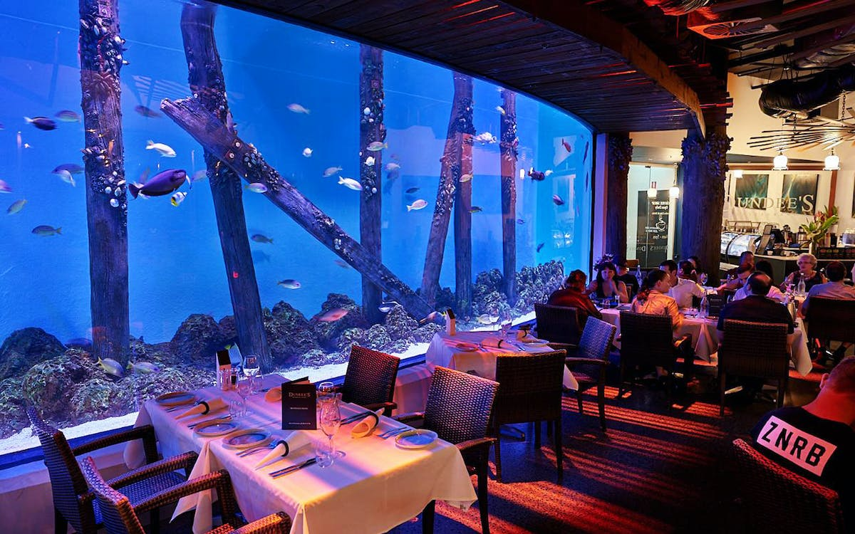 cairns aquarium by twilight with optional dining-1