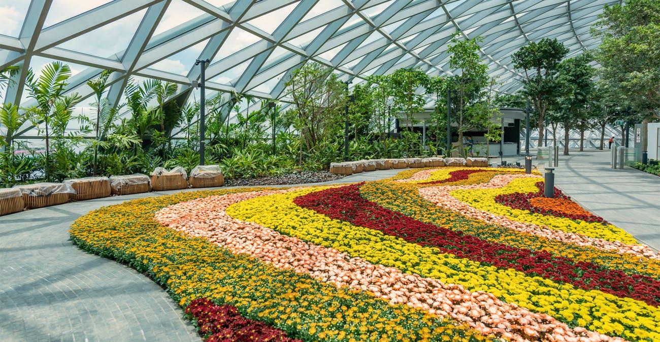 Canopy Park - Jewel Changi