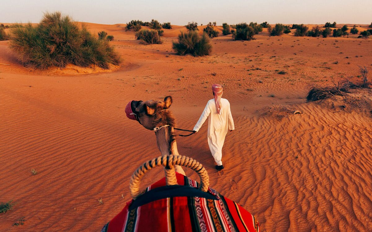 al maha desert resort & spa dubai-0