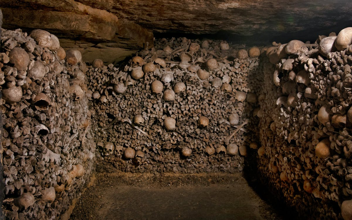 skip the line catacombs of paris & seine river cruise tickets with audio guides-1
