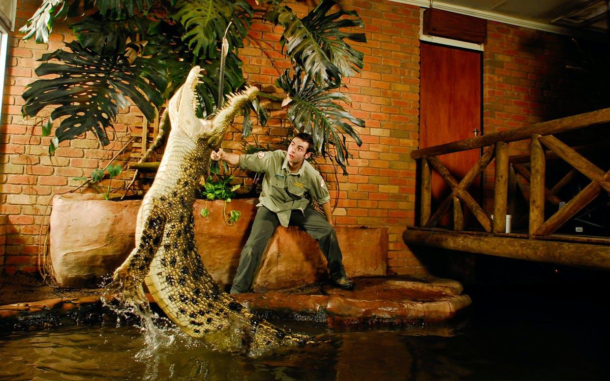 ballarat wildlife park admission tickets-1