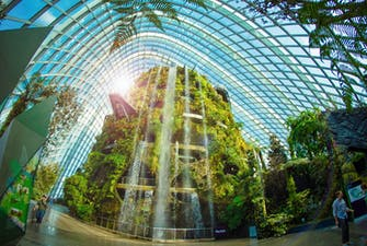 Gardens by the bay singapore-2