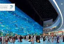Dubai Aquarium -3