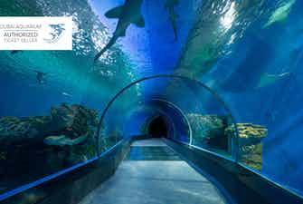 Dubai Aquarium - 2