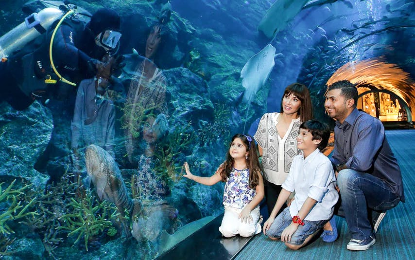 dubai aquarium & underwater zoo-1
