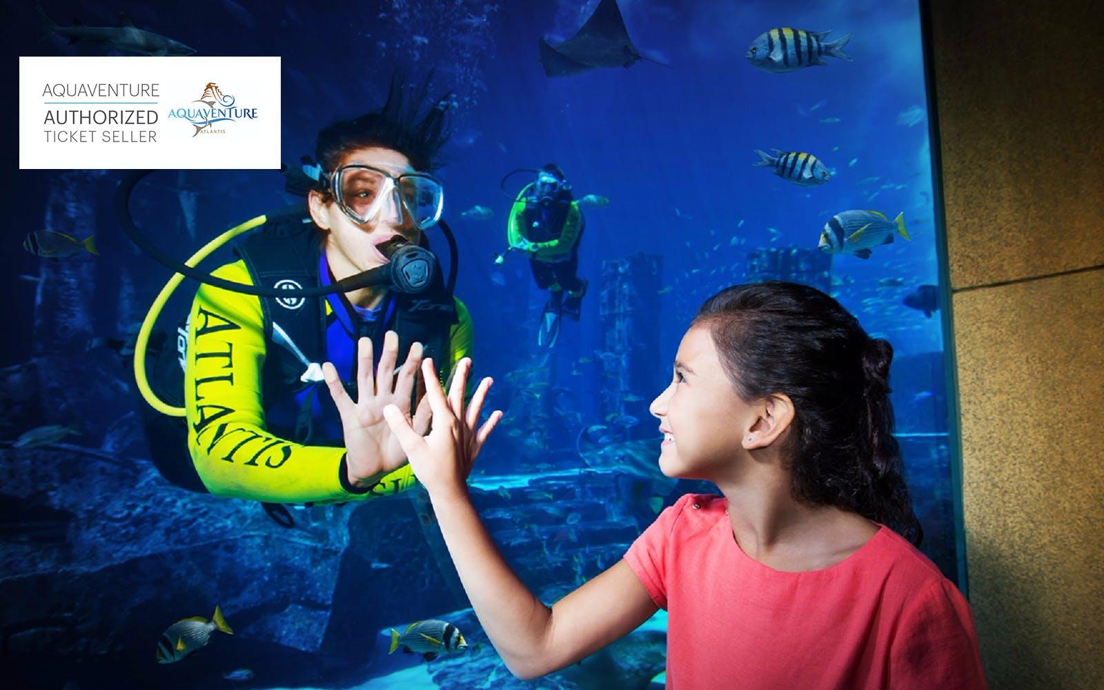 Lost Chambers Aquarium - 1