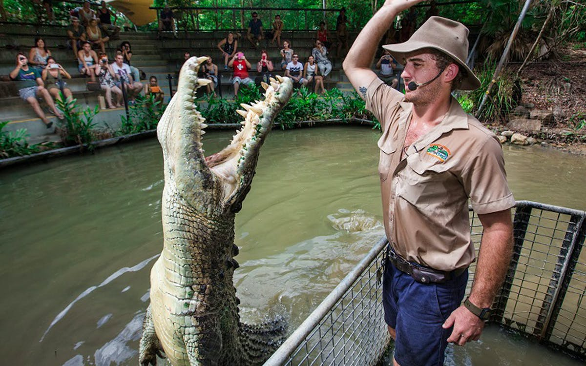 hartley`s crocodile adventures half day tour from cairns-0