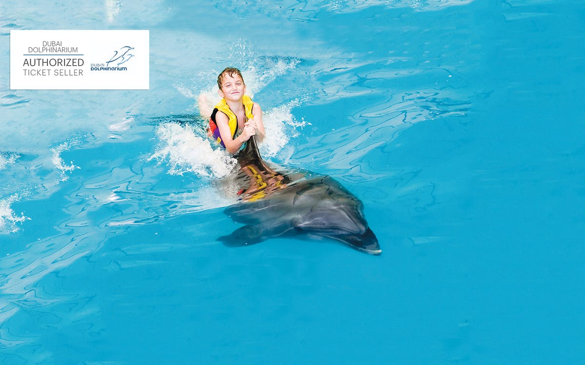 dubai dolphinarium: swimming with dolphins-3